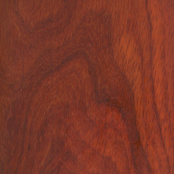 Heartwood color can vary, ranging from a pale pinkish orange to a deep brownish red. Most pieces tend to start reddish orange when freshly cut, darkening substantially over time to a reddish/purplish brown (some lighter pieces age to a grayish brown).